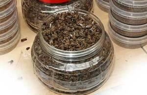 Подмор из пчел