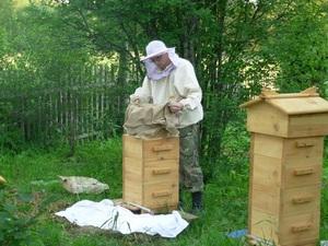 Сделать пчелиного улья своими руками фото 818